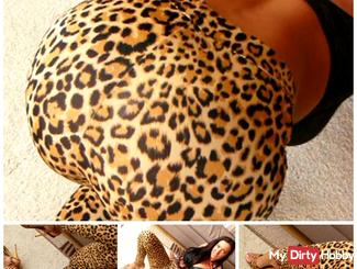 Leopard leggings video
