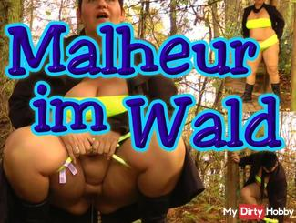 Malheur in the forest