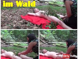 Spassige testicular torture in the forest