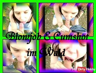 Blowjob + cumshot in the forest