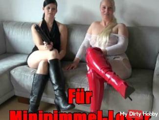 For Minipimmel loser !!