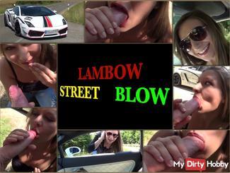 LAMBOW STREET BLOW
