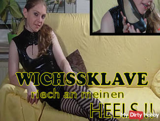 WHICH SLAVE! My feet and smelling of HEELS! Dirty Talk!