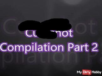 Cum***t Compilation 2
