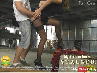 Stalker: Mysterious Room