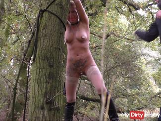 In the woods tied, whipped, fucked and pissed