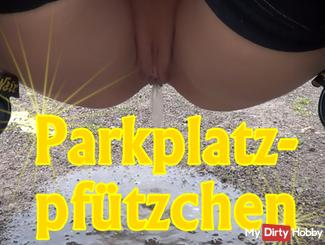 parking place pee