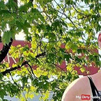 Dark_Diamond