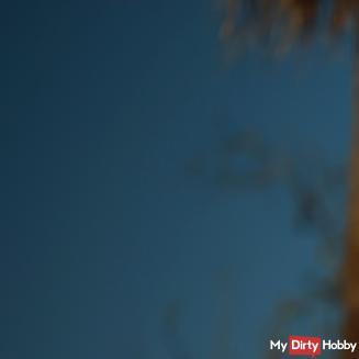 Melina-May