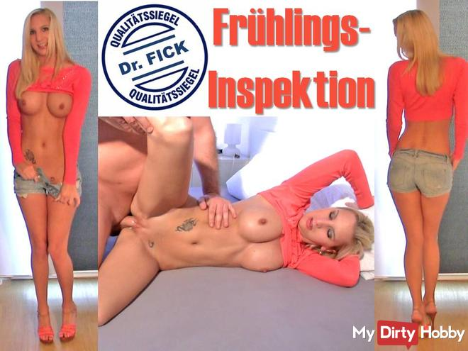 Spring inspection Dr. Fick, XXXL CreamPie