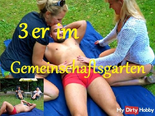 FFM Geiler 3er in the community garden