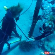 Underwater-bon****