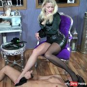 Nylons licking and sniffing 3