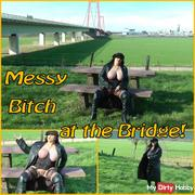 Come & fuck me at the beginning of Spring under the Messy Bridge !!