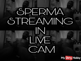 SPERMA STREAMING IN LIVE CAM