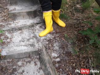 Walk in the forest with rubber boots