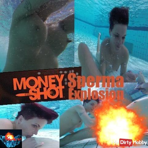 MoneyShot – Cum Explosion