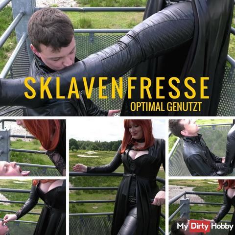 Sklavenfresse optimal genutzt