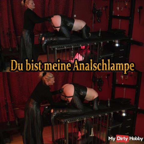 Bi slave anal fucked