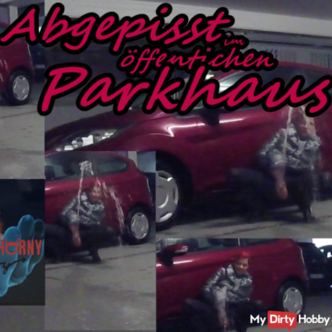 Pissed in the public parking garage !!!