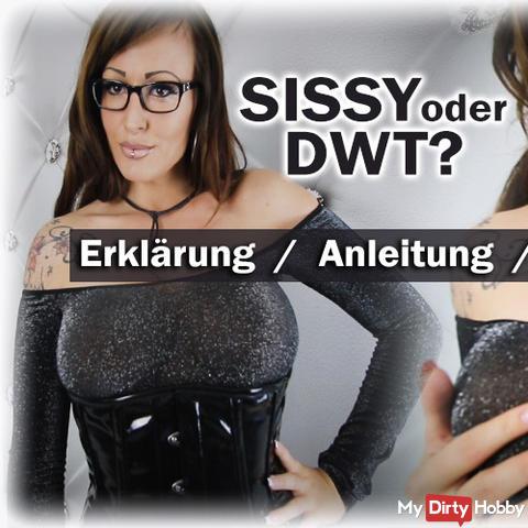 Sissy oder DWT? Erklärung / Anleitung / Countdown