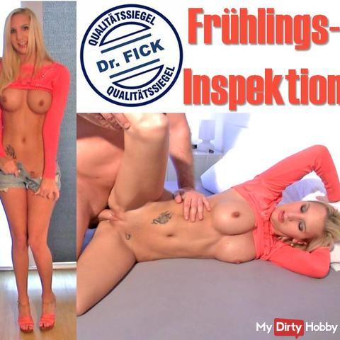Spring inspection Dr. Fick, XXXL CreamPie