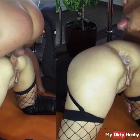 Doggy fucked the ass and sprayed full