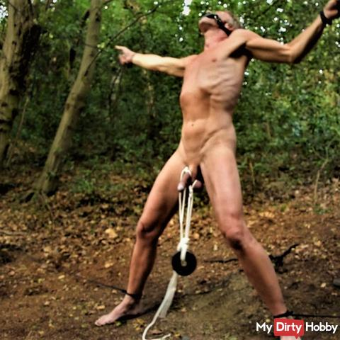 flogged in the forest
