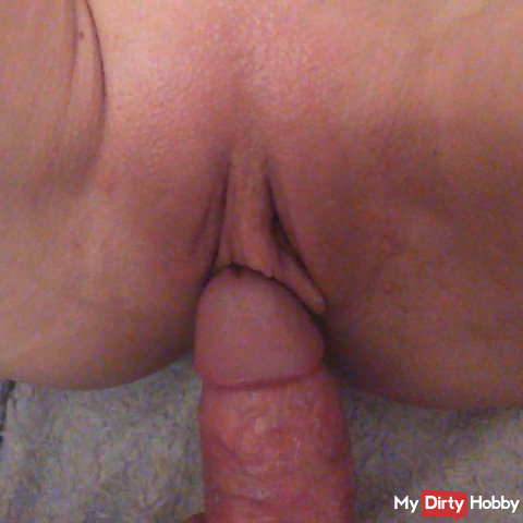cock in my hot pussy