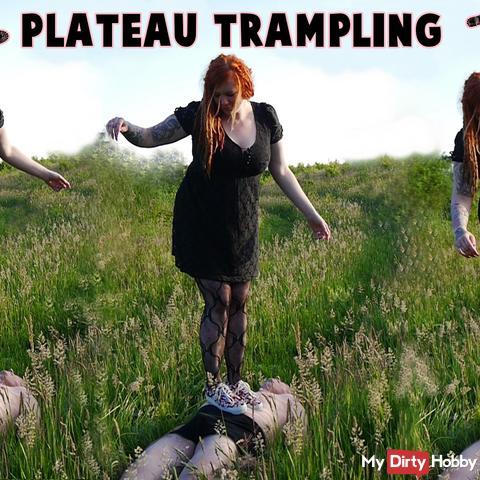 Plateau Trampling