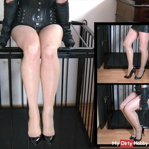 Erotic imaginative dominant depiction of the nylon feet of Mistress Syrkay