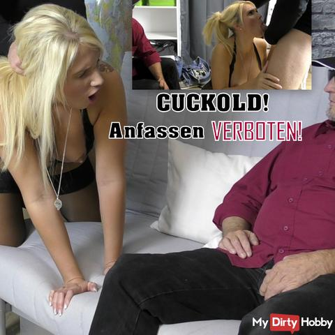 Cuckold! Do not touch!