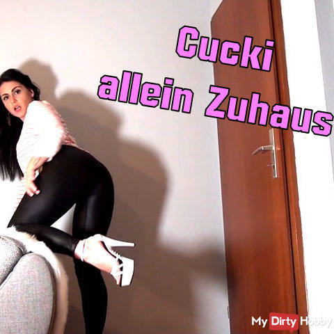 Cucki alone at home