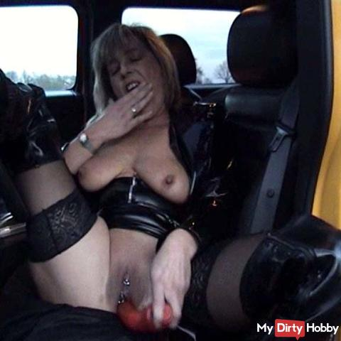 Horny Hummer