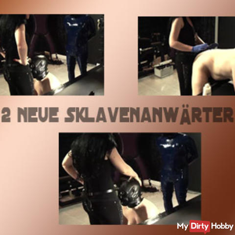 2 new slave contenders I