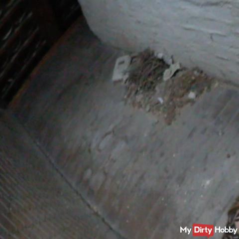Schneller Fick auf dem Dachboden - wurden wir erwischt?? (POV)