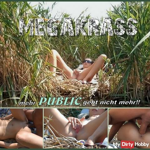 MEGAKRASS - more PUBLIC is not working anymore