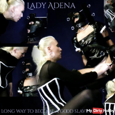 The long way to be a good slave, and to be milked Part 2