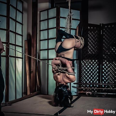 Bondage Yuno in Black