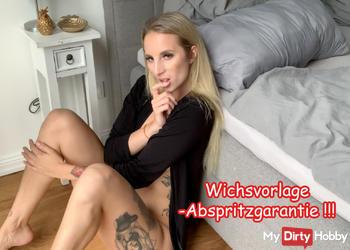 Wichsvorlage- Abspritzgarantie !!!