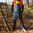 horny in overalls