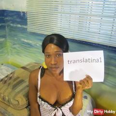 translatina1