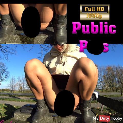 Public Rastplatz Picknicktisch pi** Action