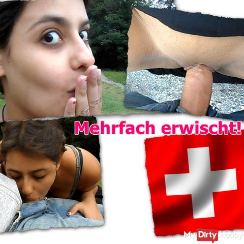 Multiple caught! On the outskirts of Zurich! My first video!