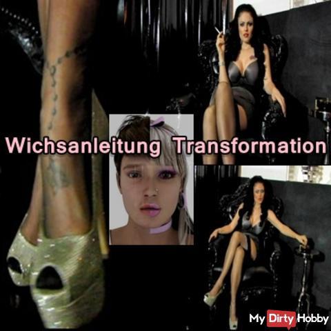 Wichsanleitung Transformation