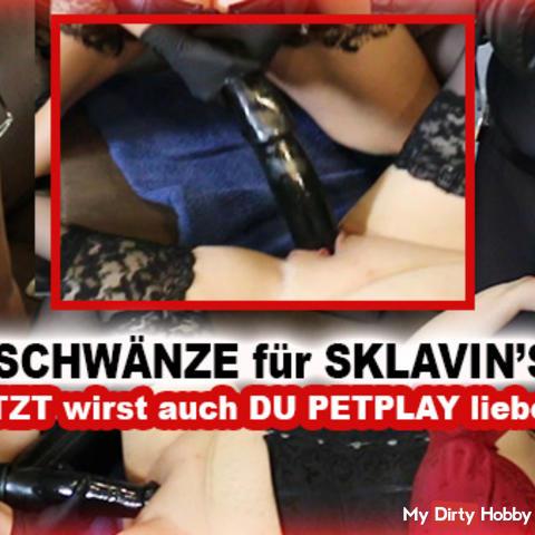 Hengstschwänze für Sklavin's Löcher! So wirst selbst du Petplay lieben!