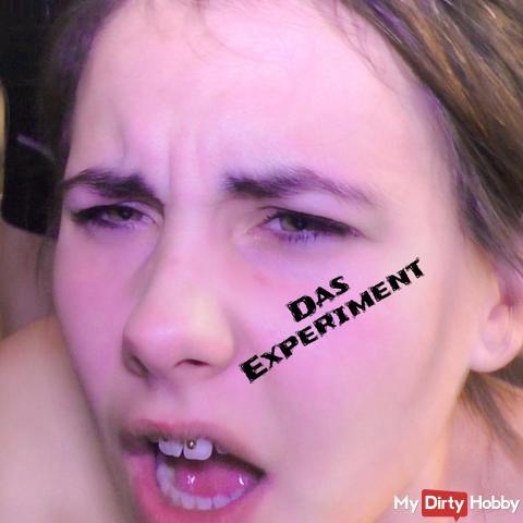 Das Experiment - kleine pralle musc**