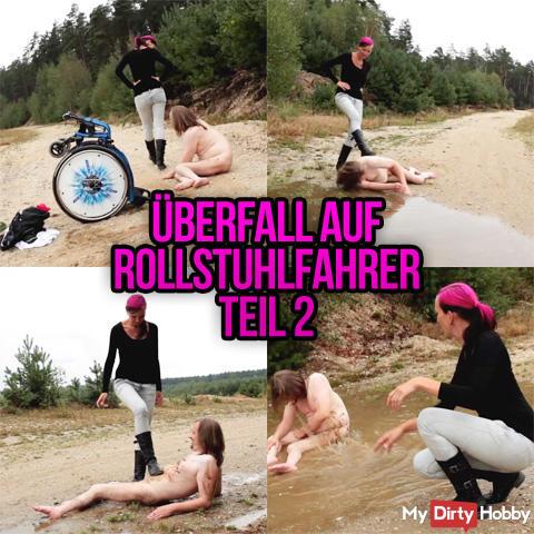 assaulted wheelchair guy Part II