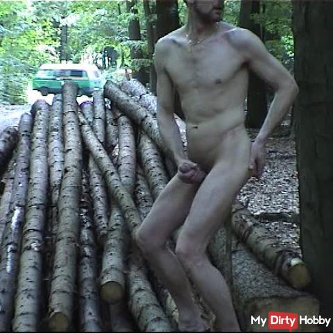 Public wank with a stick in ass