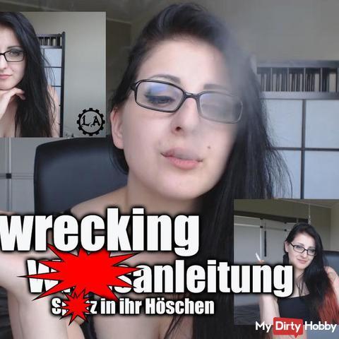 Homewrecking wi**sanleitung - spri** in ihr Höschen